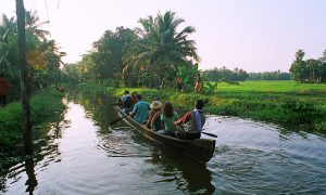 tour packages to kerala, south india tour