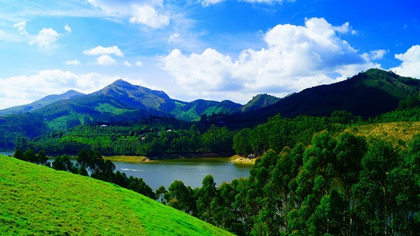 Luxury Tour in Munnar | Kerala Tour | The Travel Planners