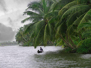 Kerala Hills and Backwaters