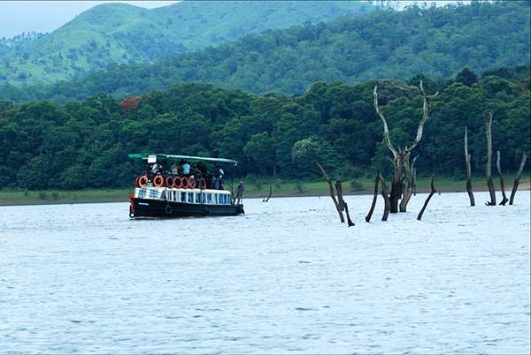 Holidays in Kerala | Tourist Activities in Thekkedy | Periyar | The Travel Planners